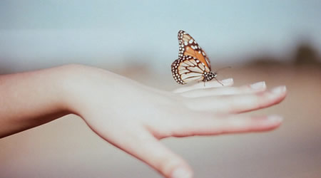 善忘是一種能力,更是一種智慧【經典語錄網】