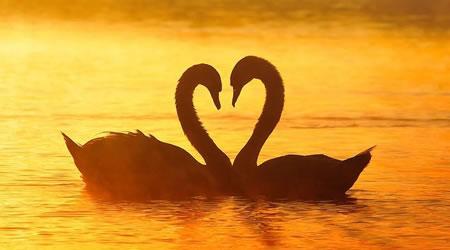 經典愛情語錄 :如果你愛上了一個無法在一起的人,請記住這四句話【經典語錄網】