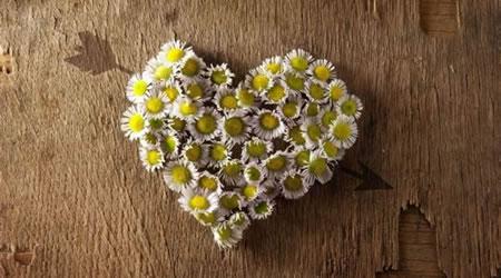 經典感情短文愛情語錄:我們相愛一生,一生還是太短【經典語錄網】