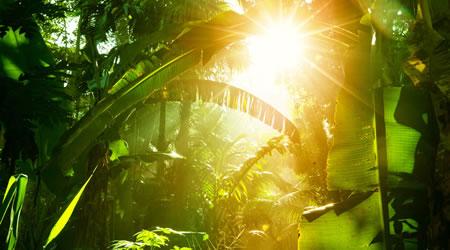 經典心靈雞湯短文:心若向陽,何俱憂傷,心態靠自己調節,與其逃避現實不如笑對人生【經典語錄網】