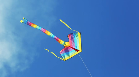 經典心情隨筆語錄短文:風吹過的時候,連同自己也以為會飛【經典語錄網】
